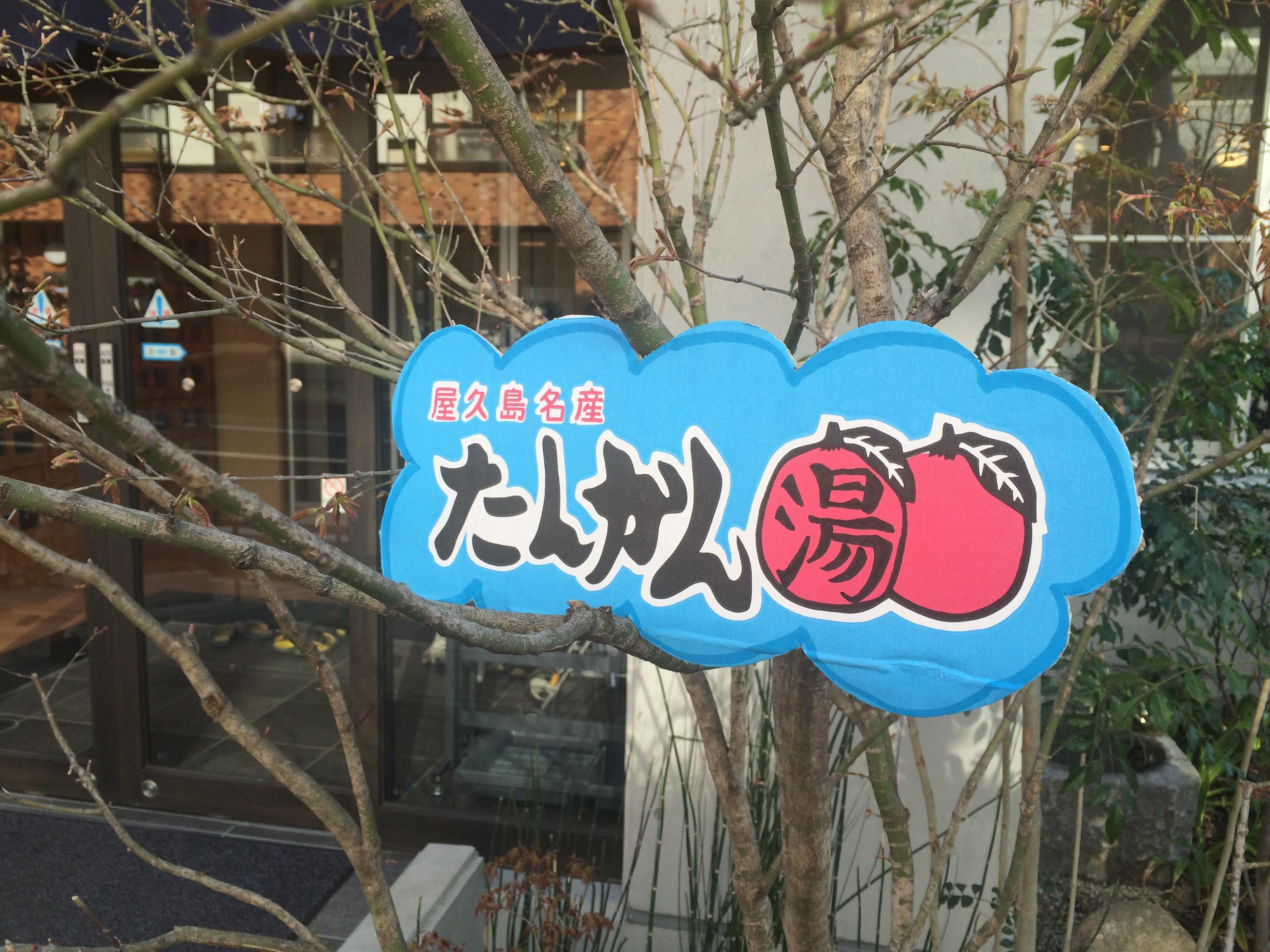 http://www.saito-yu.com/blog/3903644ba96d4b4fe8928883003aaf27428f001b.jpg